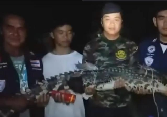Crocodilo é encontrado 5 dias depois de fugir de templo na Tailândia