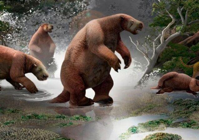 Paleontólogos revelam novas pistas sobre 'Pé Grande sul-americano'