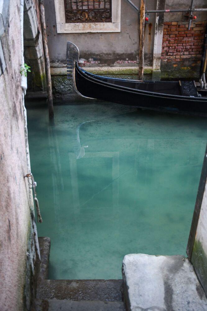 Água cristalina com pequenos peixes em Veneza