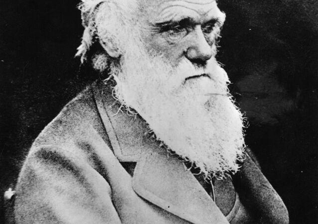 Retrato do cientista britânico Charles Robert Darwin, autor da teoria da evolução , feita pouco antes da sua morte