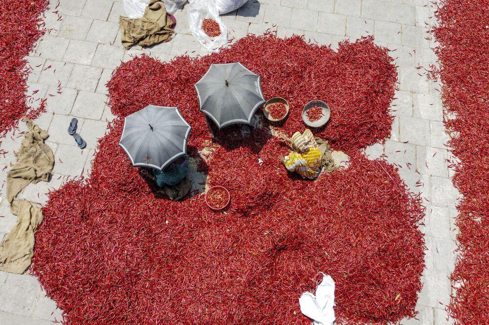 Trabalhadores esparramam pimenta vermelha no chão para a secar em aterro feito no rio Jumna, em Bangladesh