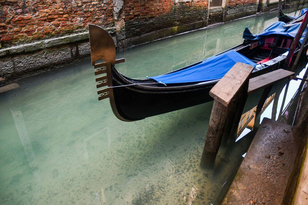Água de canais venezianos ficou mais limpa enquanto Itália vive uma crise no turismo devido ao coronavírus