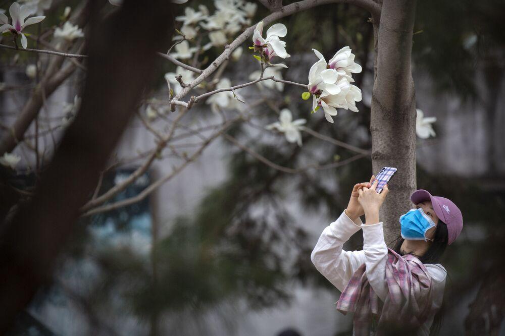 Mulher tira foto de flores no Zoológico de Pequim durante pandemia de coronavírus, China, 24 de março de 2020