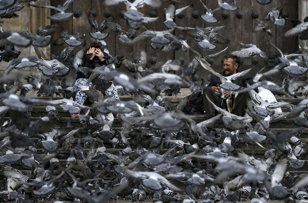 Pombos procuram comida em praça de Bogotá, Colômbia, 25 de março de 2020