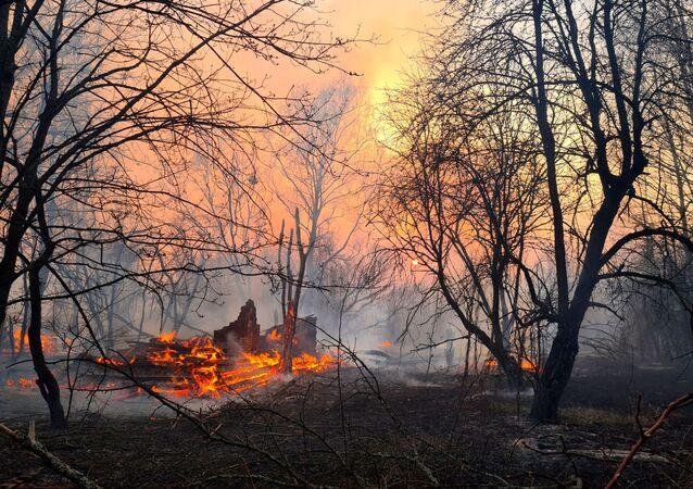 Incêndio queima na zona de exclusão em torno da usina nuclear de Chernobyl, na Ucrânia, 5 de abril de 2020
