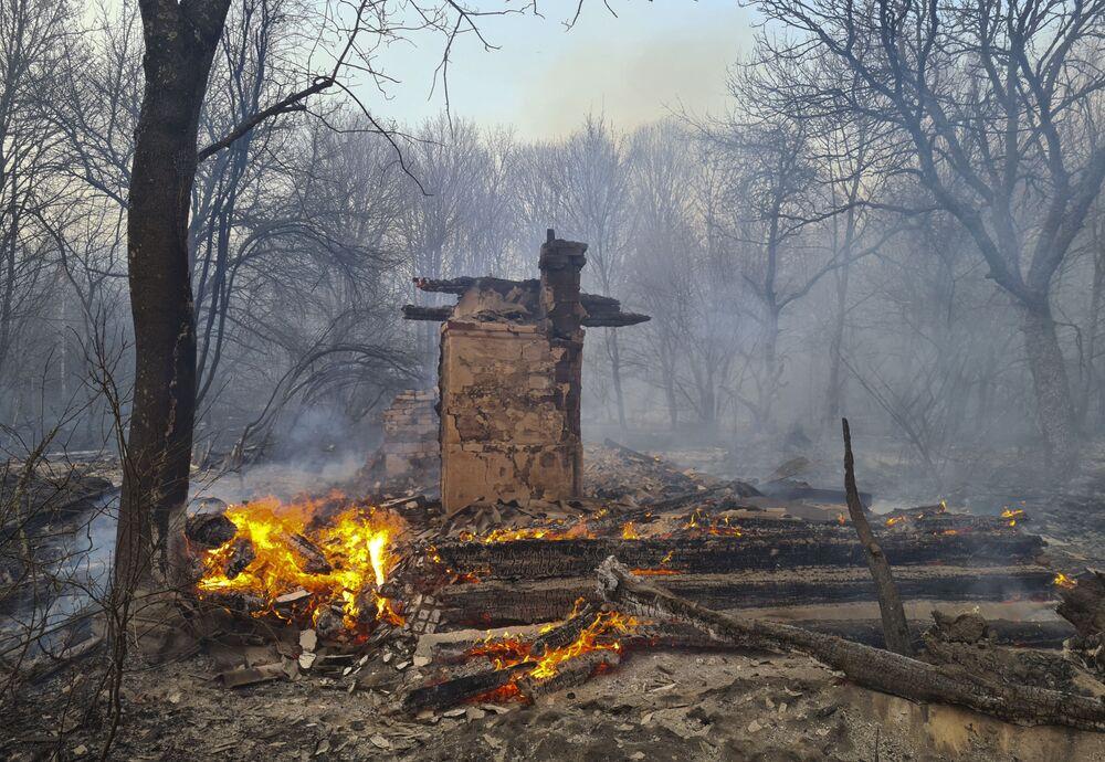Troncos queimados em incêndio próximo à Chernobyl