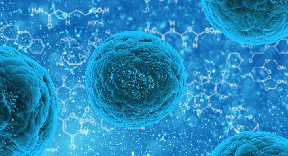 Imagem de bactérias