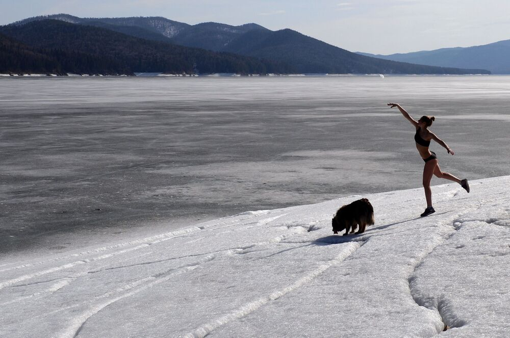 Praticante de snowboard durante passeio com seu cachorro de estimação perto de casa nos subúrbios de Krasnoyarsk, Rússia
