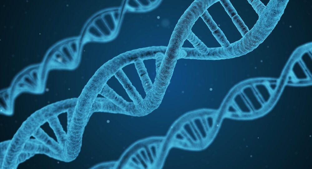 DNA (imagem ilustrativa)