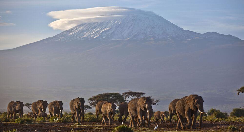 Vulcão e monte Kilimanjaro