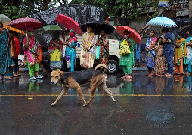 Cão vadio passa por mulheres esperando em uma fila na chuva para receber alimentos grátis, em meio ao isolamento nacional para retardar a propagação da doença do coronavírus (COVID-19), em Calcutá, Índia, 27 de abril de 2020