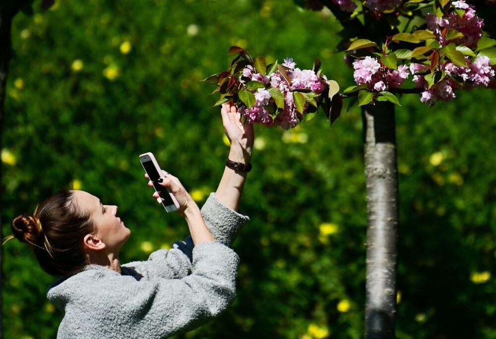 Garota tira fotos de flores em Sochi