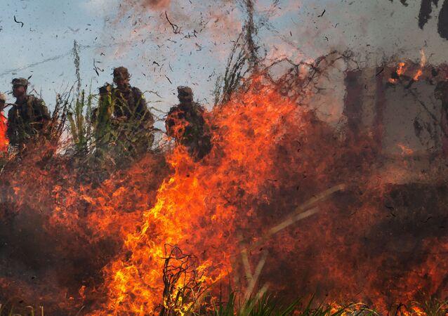 Militares participam no Pará de treinamento contra incêndios na Amazônia