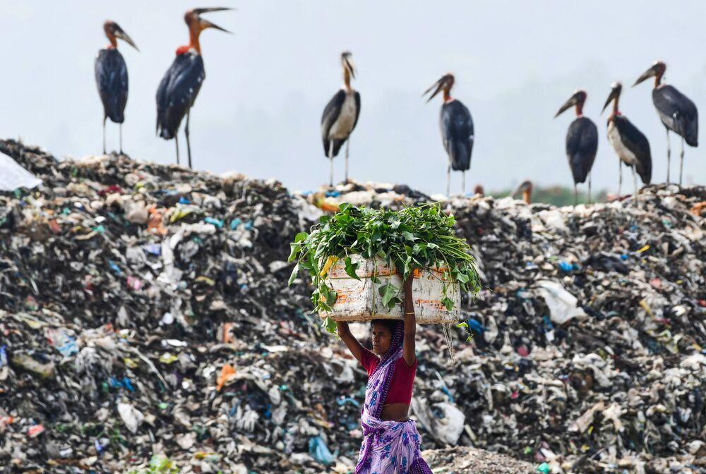 Mulher passa do lado de cegonhas em um dos maiores aterros de lixo no nordeste da Índia, em 4 de junho de 2020