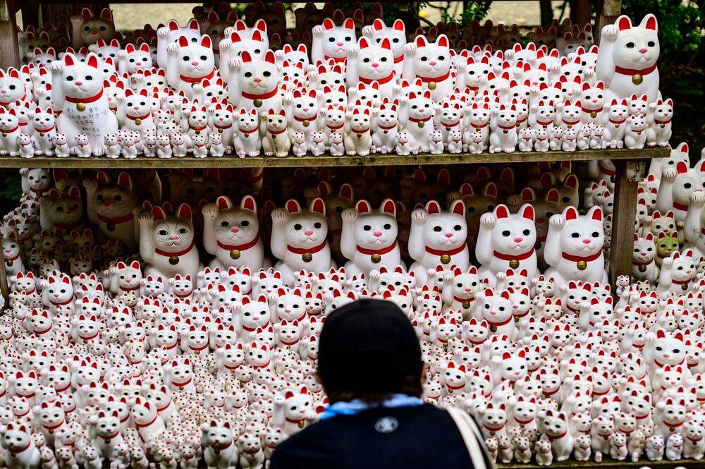 Visitante observa tradicionais estatuetas japonesas Maneki-neko no templo Gotokuji próximo de Tóquio, Japão