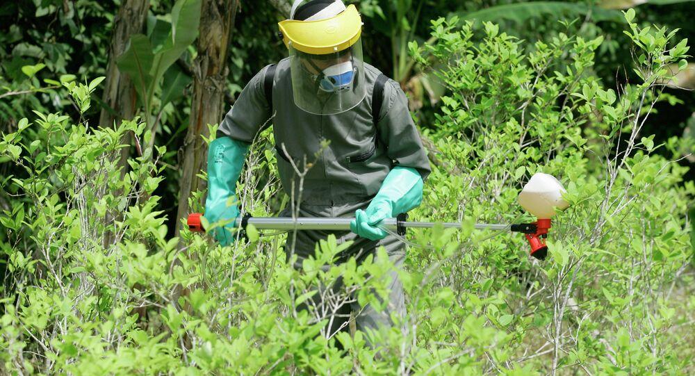 Segundo as autoridades peruanas, o Peru não é mais o maior produtor de cocaína do mundo, uma vez que a produção dessa droga no país caiu para 270 toneladas no último ano, enquanto, na Colômbia, subiu mais de 50%, chegando a 440 toneladas