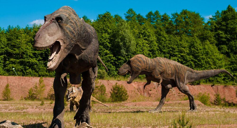 Dinossauros (imagem referencial)