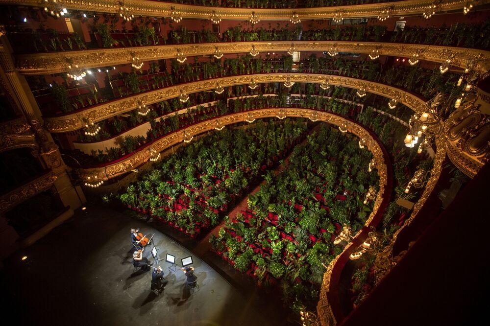 Em 22 de junho, orquestra ensaia no Gran Teatre del Liceu, na cidade espanhola de Barcelona
