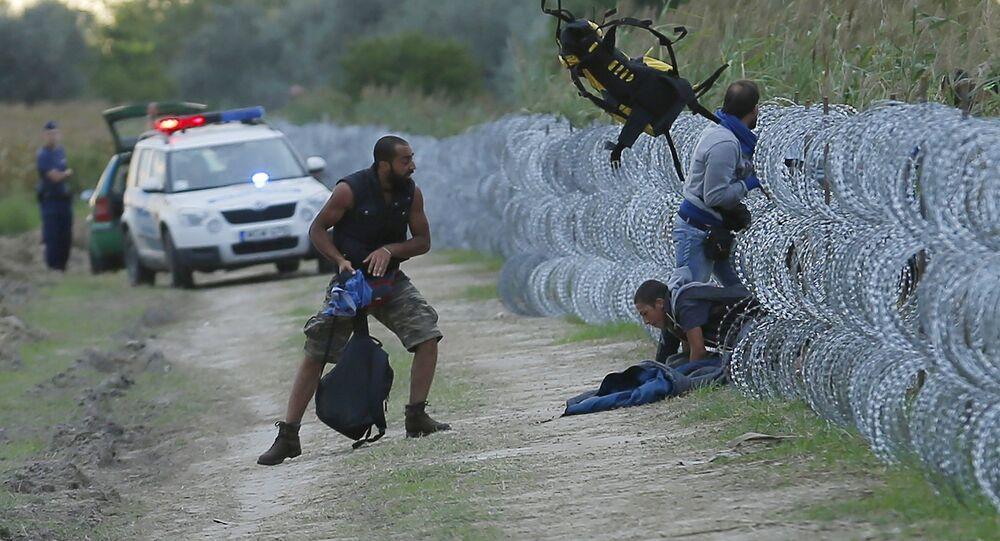 Migrantes sérvios tentam atravessar ilegalmente a fronteira com a Hungria perto da cidade de Roszke, em  26 de agosto de 2015