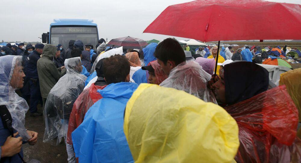 Imigrantes chegando ao campo de Roszke, na Hungria.