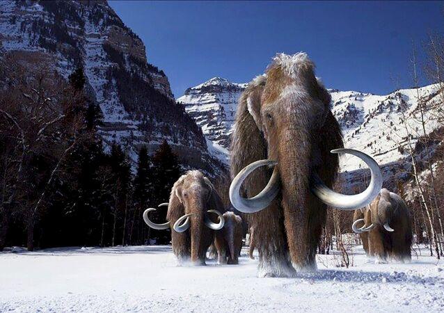 Mamutes lanosos (ilustração - cortesia da Giant Screen Films)