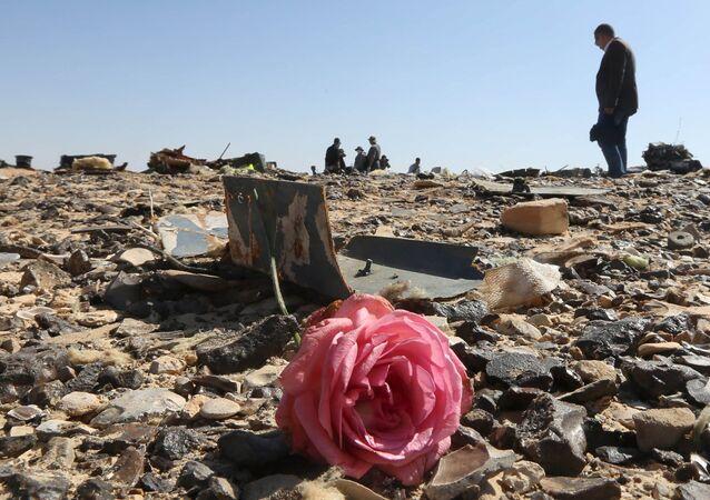 Uma rosa no local do acidente do avião russo Airbus A321 no Egito