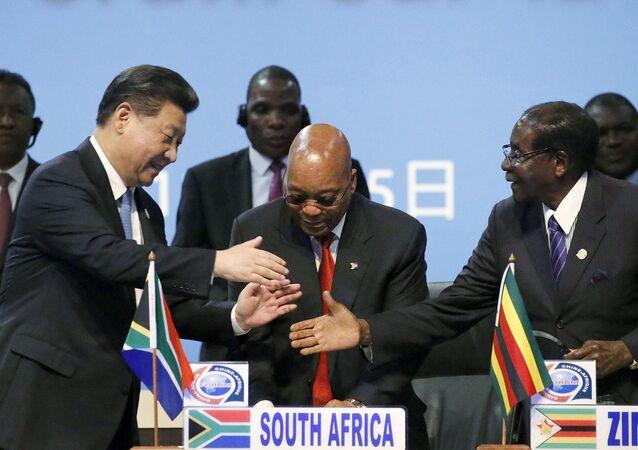 O presidente da China, Xi Jinping, cumprimenta o presidente do Zimbabwe e da União Africana, Robert Mugabe, diante do presidente da África do Sul, Jacob Zuma.
