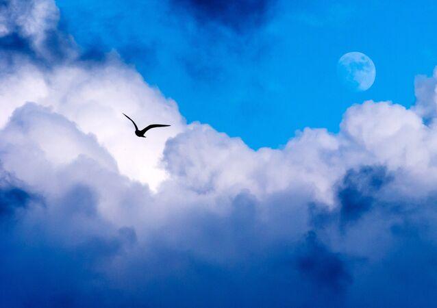 Lua vista no céu em uma tarde de Sevastopol