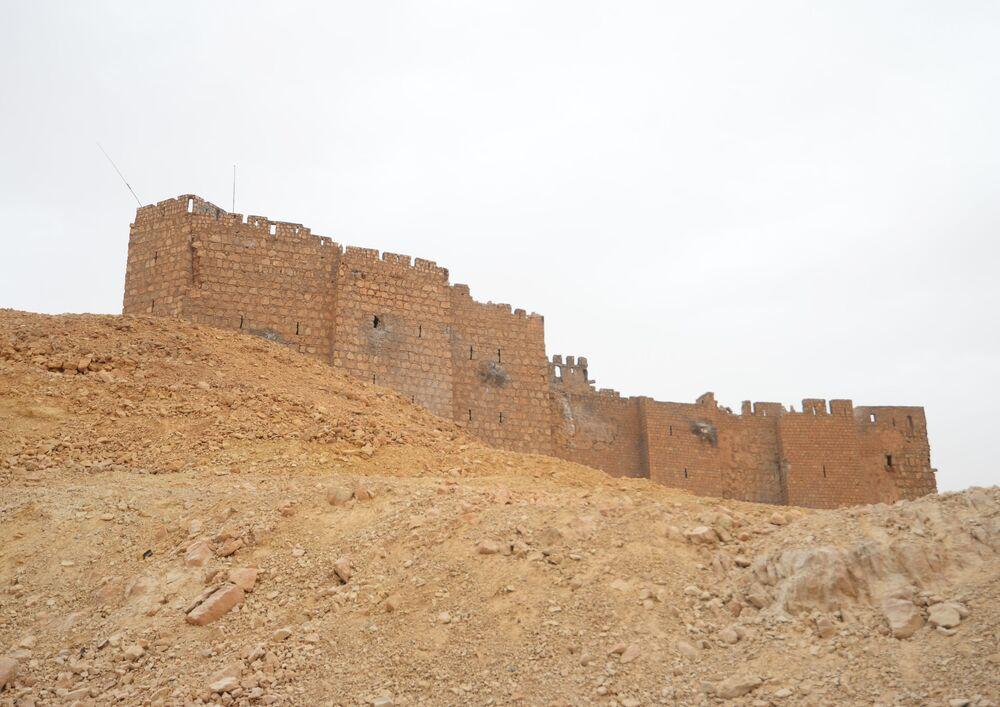 A batalha pela libertação do Castelo de Palmira começou na madrugada da sexta-feira. Agora, o monumento histórico está sob o controle das forças leais ao governo