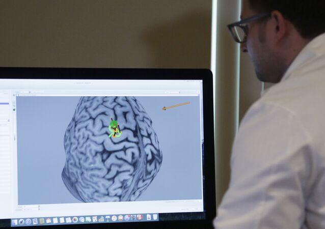 Um cientista estudando cérebro humano. Foto de arquivo