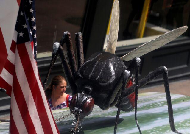 Aedes Aegypti gigante em Chicago, Illinois