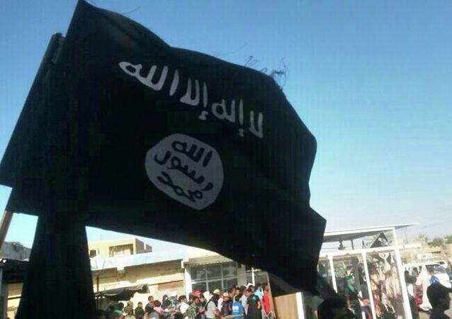 Militantes do Daesh em Fallujah