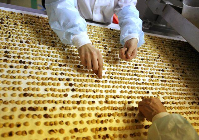 Uma fábrica de chocolate russa durante o trabalho