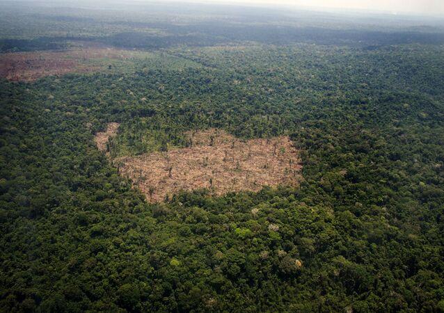 A COP 21, Conferência do Clima, reunirá 196 países com o objetivo de fechar um novo acordo para diminuir a emissão de gases de efeito estufa