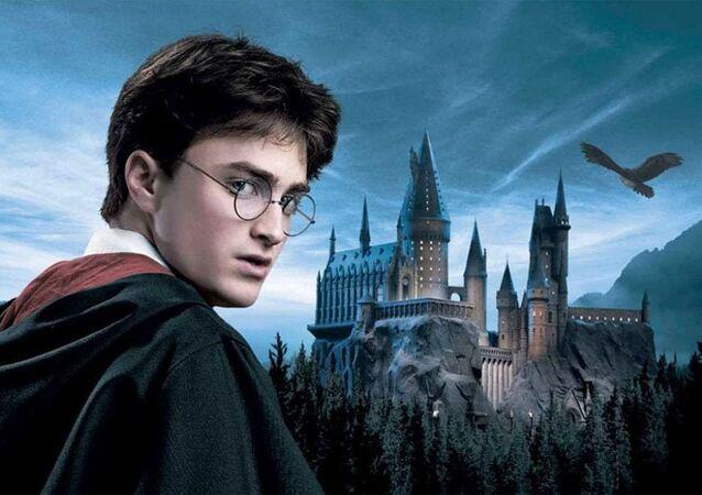 O universo de Harry Potter está na Family Geek Brasil