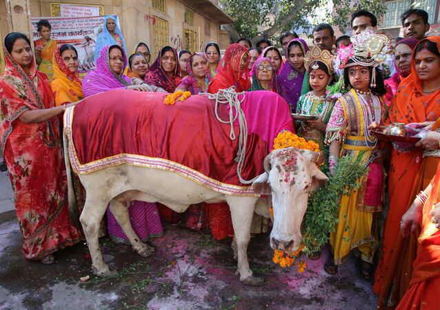 Hindus vestidos como Senhor Krishna e Radha se reúnem durante uma Gho Puja - adoração da  vaca (imagem referencial)