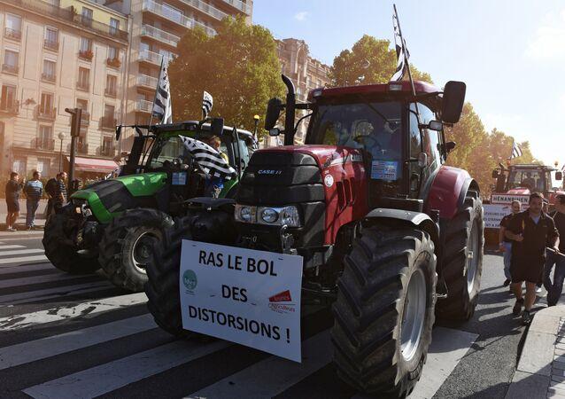 Produtores agrícolas franceses protestam contra a crise no setor agrícola, Paris, França, 2015 (foto de arquivo)