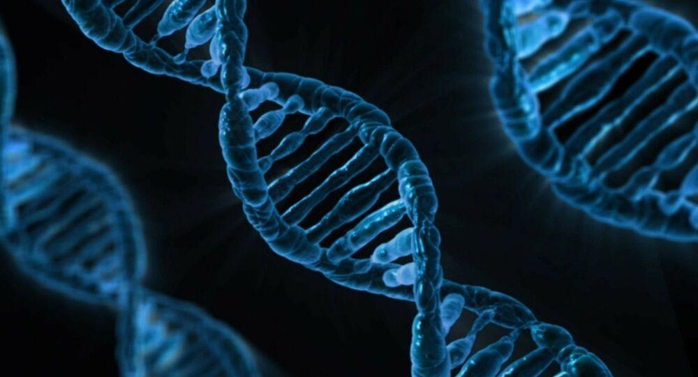 O genoma humano (imagem referencial)