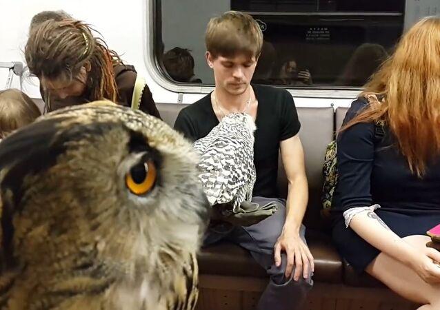 Magos russos pegam metrô para ir a Hogwarts