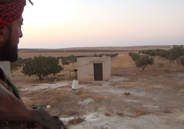 Militar do exército sírio na província de Hama, Síria (foto de arquivo)