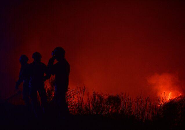 Bombeiros participam da extinção de um incêndio em Calheta, na Madeira