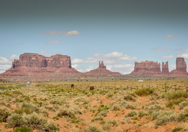 Vaca no Monument Valley, EUA. Maio, 8, 2014