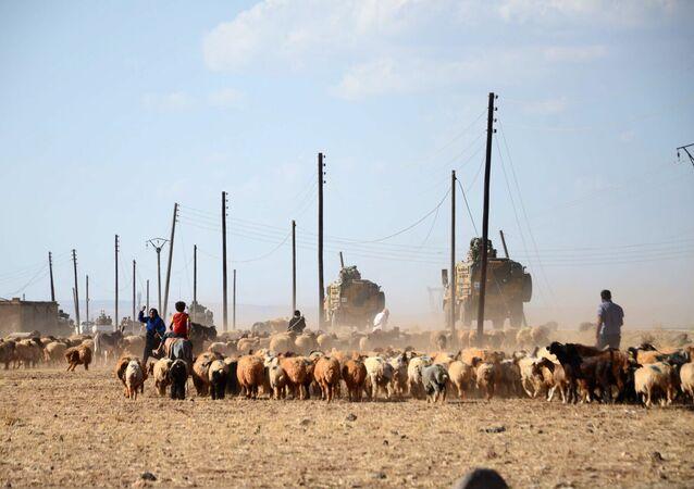 Tropas turcas passam ovelhas no caminho perto de vila de Tuwairan, norte da Síria, 4 de setembro de 2016