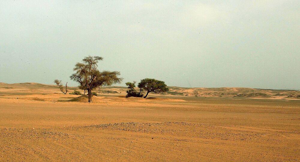 Deserto do Saara, no sul da Argélia, entre as cidades de Illizi e Djanet (arquivo)