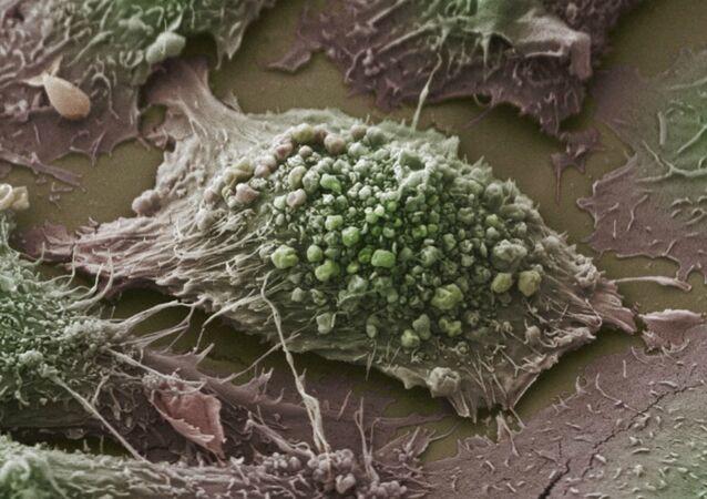Cientistas estão saudando um avanço no tratamento do câncer que vai inaugurar uma nova era para aqueles que lutam contra a doença usando o próprio sistema imunológico do corpo para atacar células cancerosas.