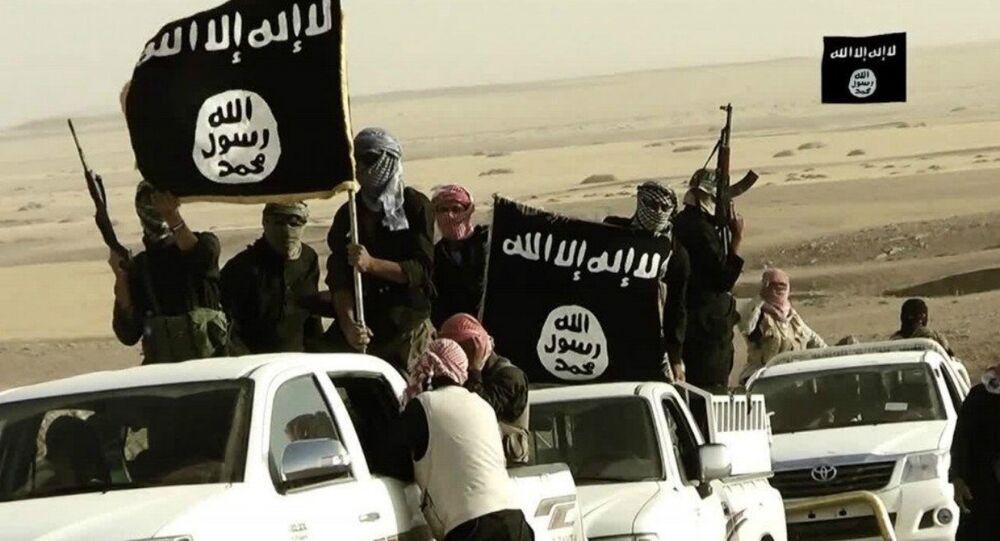 Jihadistas do grupo terrorista Daesh