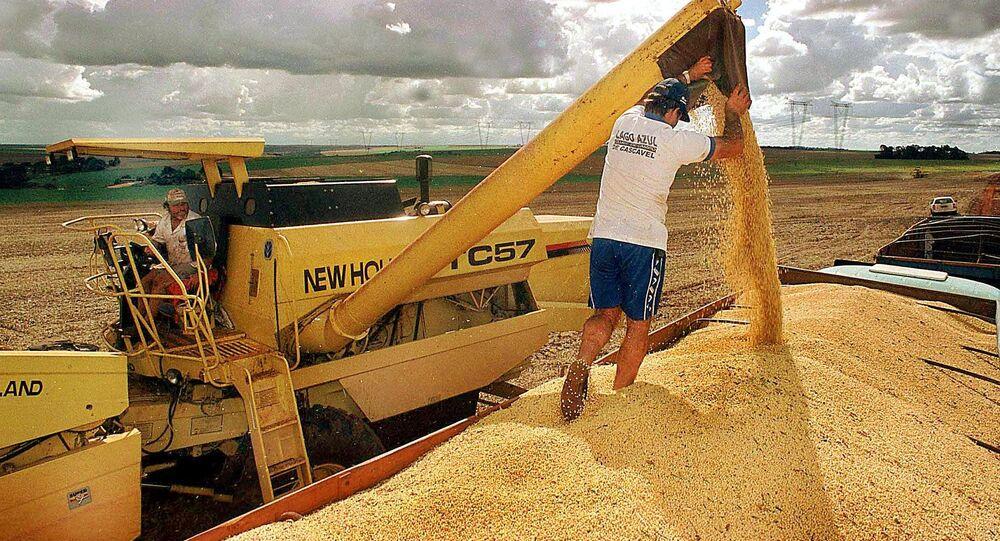 Brasil joga no ralo nova safra recorde de grãos