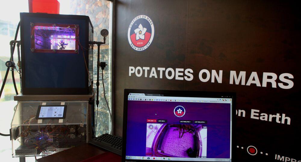 O simulador Cubesat que imite o ambiente marciano para cultivar batata