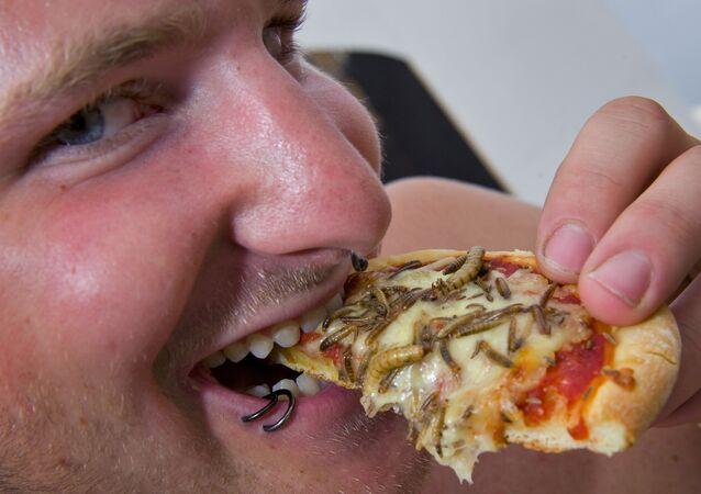 Uma pizza com insetos, foto de arquivo