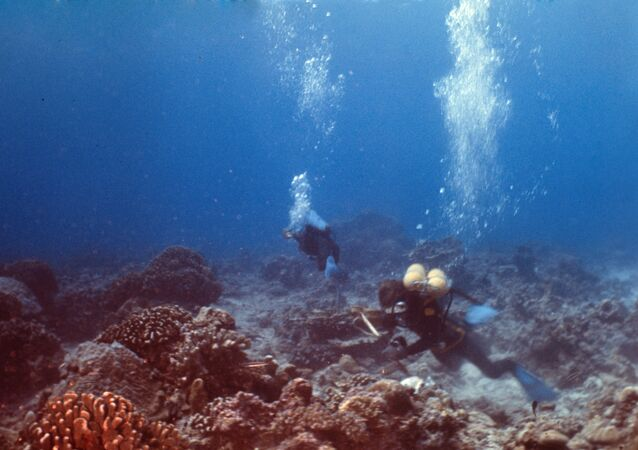 Mergulhadores estudam o fundo